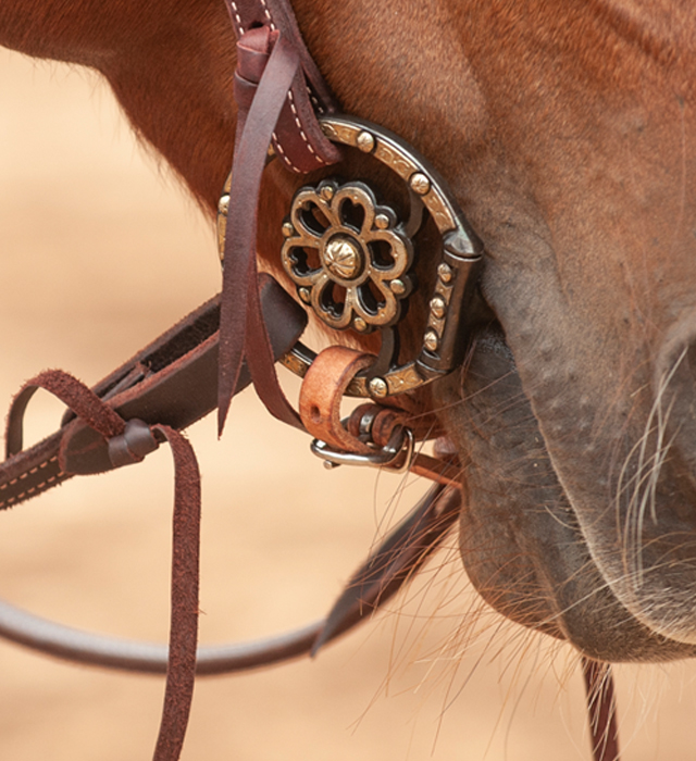 Classic Equine makes spurs for competitors and trainers