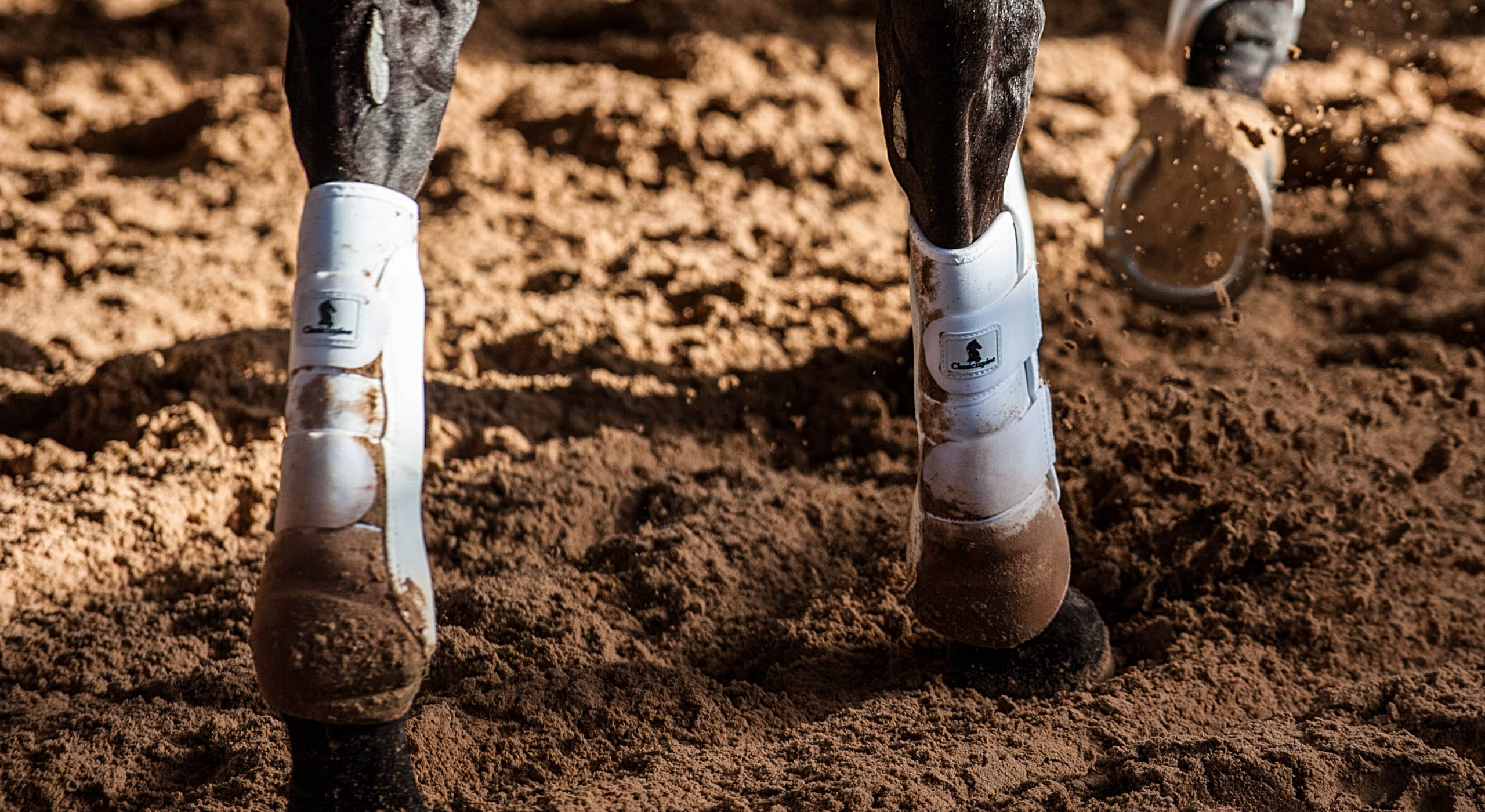 Classic Equine provides high quality equine boots that are protective for any discipline